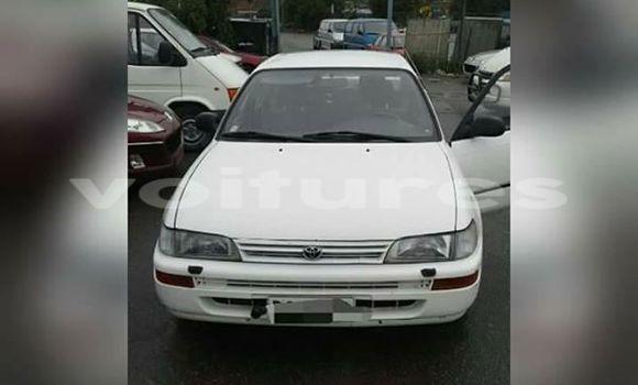 Acheter Voiture Toyota Corolla Blanc à Abidjan en Abidjan